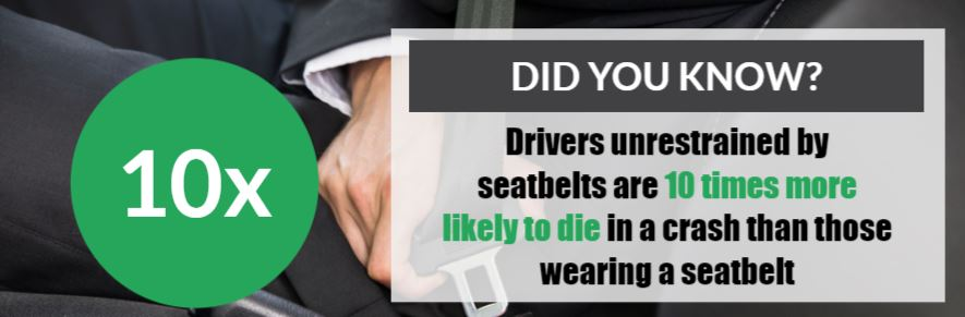 seatbelt statistics